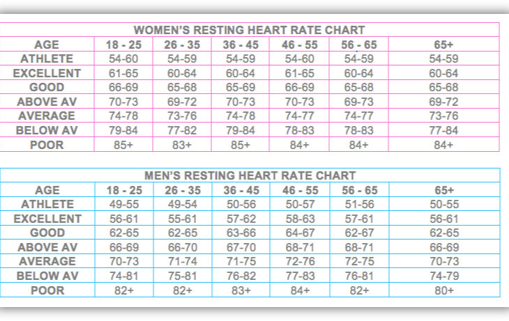 "<img src=""heart rate chart.jpg"" alt=""how can i keep fit""/>"
