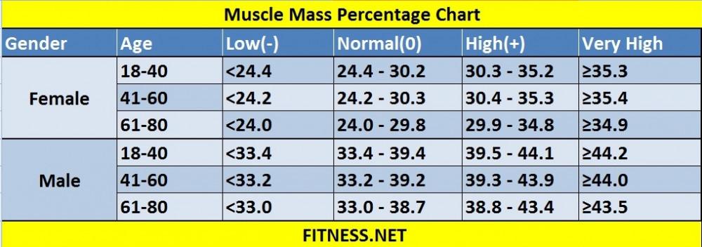 "<img src=""muscle mass chart.jpg"" alt=""10 health benefits of exercise""/>"