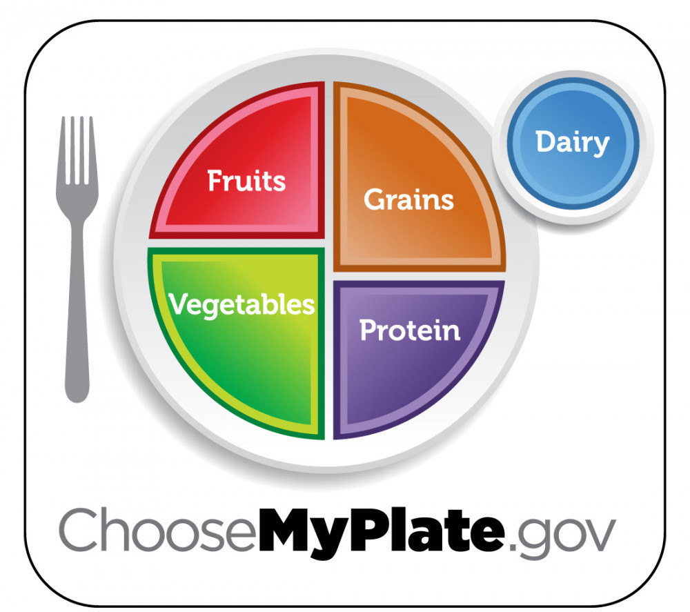 "<img src =""meal balance plate"" alt=""what is the best weight loss diet""/>"