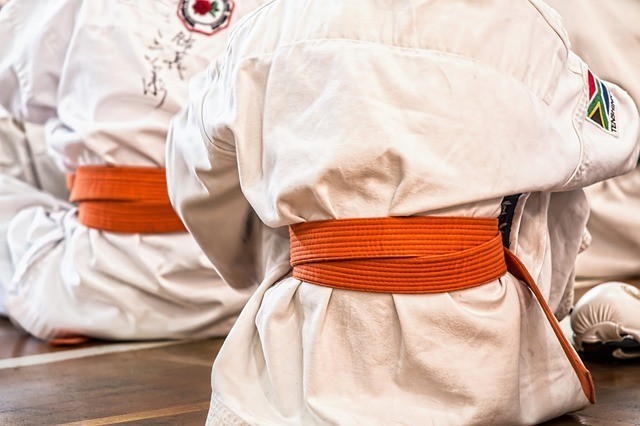"""<img src=""""kids in martial arts uniform.jpg"""" alt=""""what is the best type of martial arts to learn""""/>"""