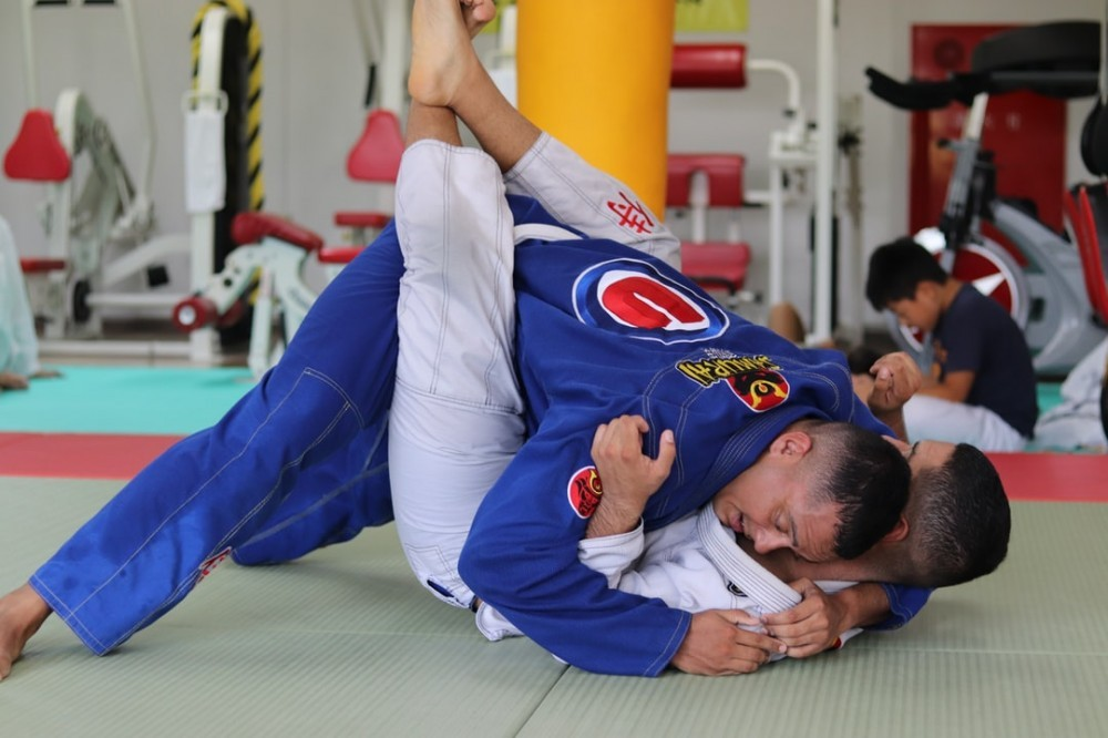 "<img src=""grappling.jpg"" alt=""what is the best type of martial art to learn""/>"