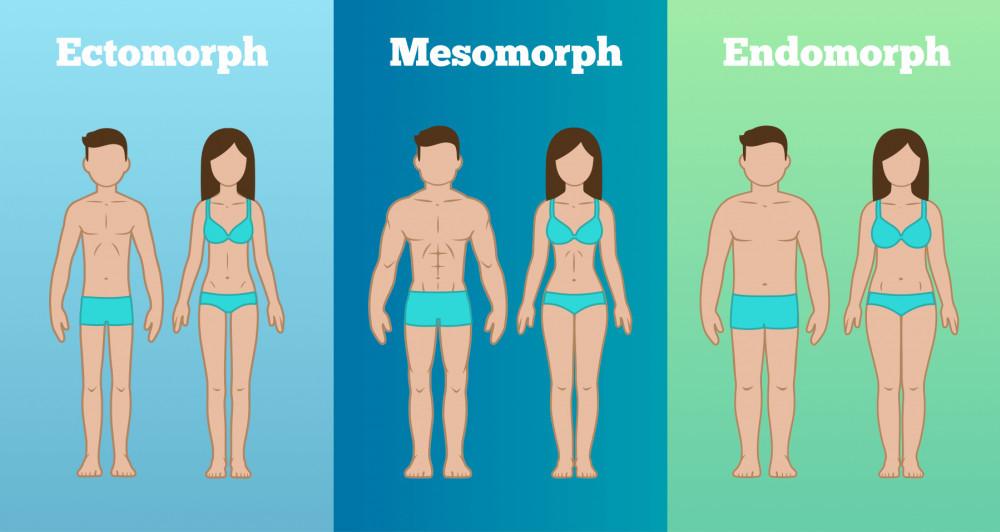 """<img src=""""body types.jpg"""" alt=""""best way to lose abdominal weight""""/>"""