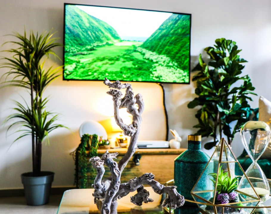 what is the best TV for Watching Sports? photo by:Devon Janse van Rensburg