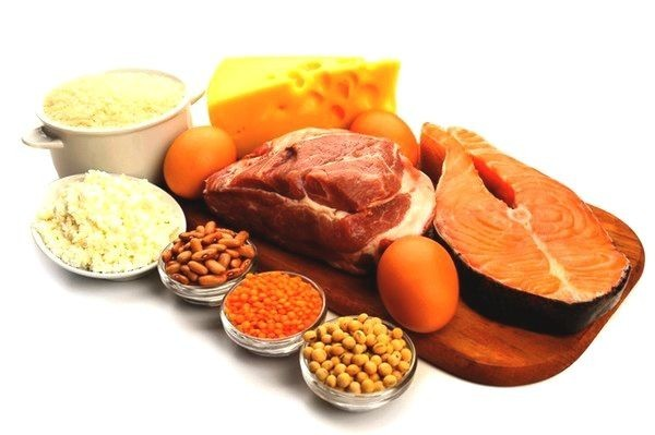 Protein diet products