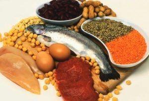 protein-rich nutrition