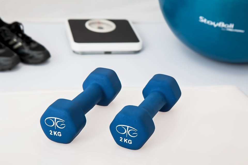 scale-weights-fitball