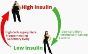 low insulin