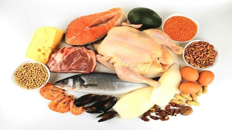 All kind of protein sources like fish, chicken, nuts and cheese