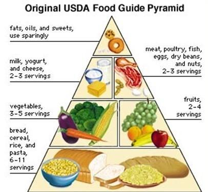 The western present food pyramid