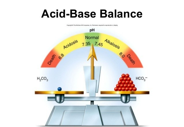Acid base in balance with water