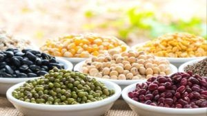 Legumes good for lowering cholesterol