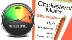 stress and cholesterol