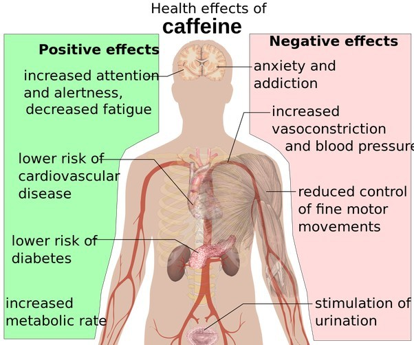 caffeine-effect