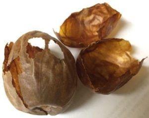 Avocado stone skin