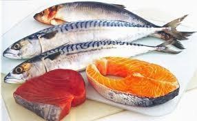 salmon, trout, mackerel and herring