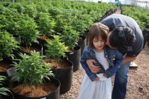 cbd-oil-epilepsy- Father with his daughter between hemp pots
