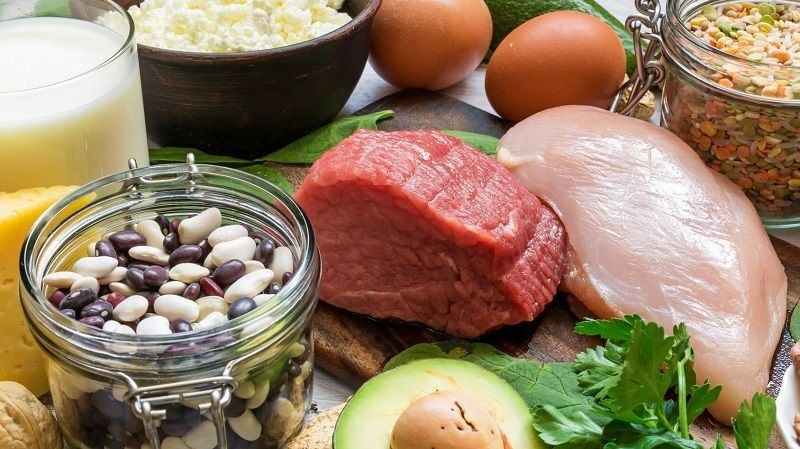 foods that contain most protein