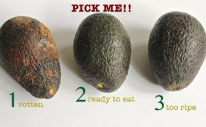 when is the avocado ready to eat