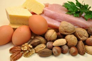 high-protein and fat