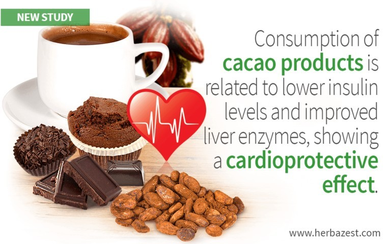 cacao-and-insulin
