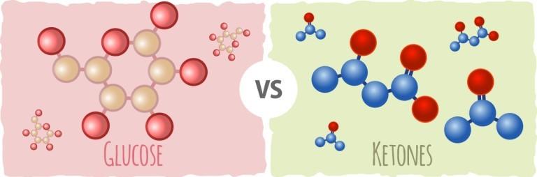ketones-versus-glucose