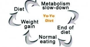 yoyo effect of diet circle