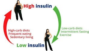 insulin production satiety