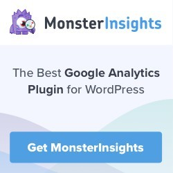 monsterinsights plugin for wordpress