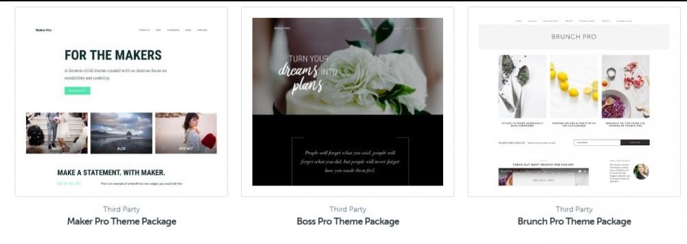 studiopress ecommerce themes