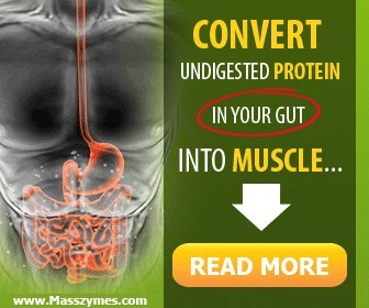 convert undigested protein to muscle