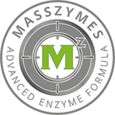 masszymes advanced formula