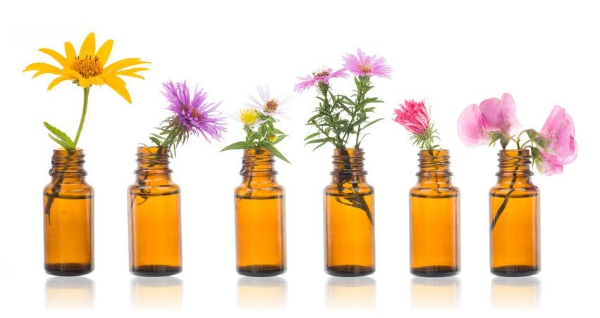 essential oils can help detox your body