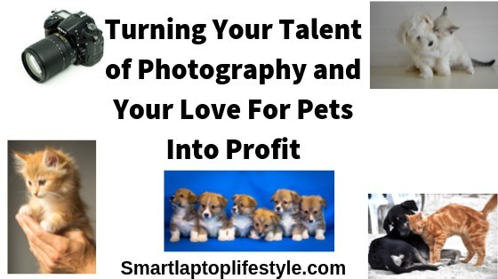 Turn Your Talent for Photography and Love of Pets into Profit