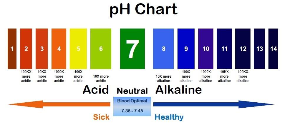 pH Health Scale