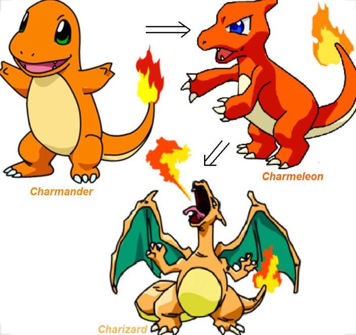 The Evolution Of Charmander To Charizard