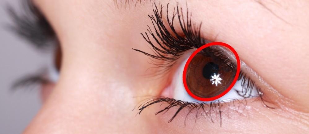 oval iris eye