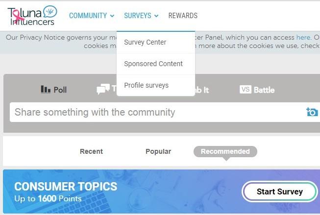 toluna survey menu screenshot