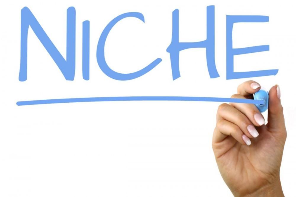 niche word image
