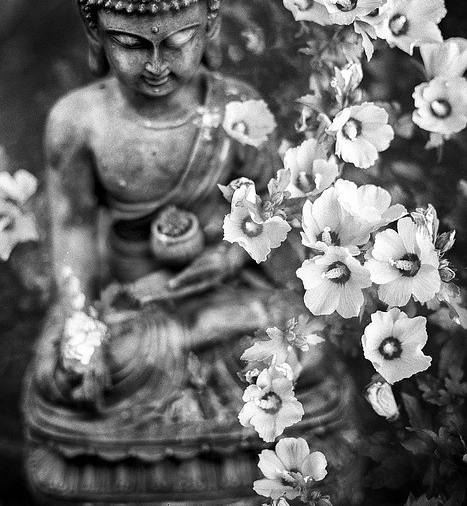 How to balance the third eye chakra through meditation