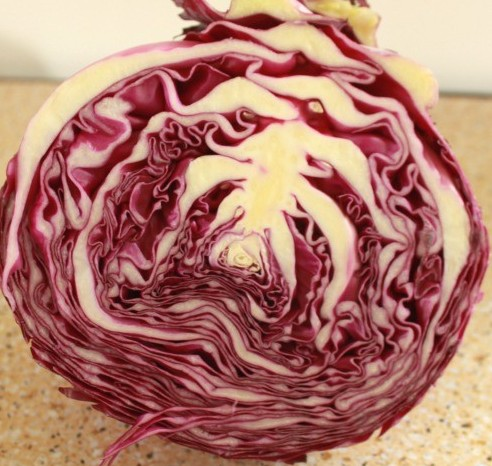 purple cabbage coleslaw recipe