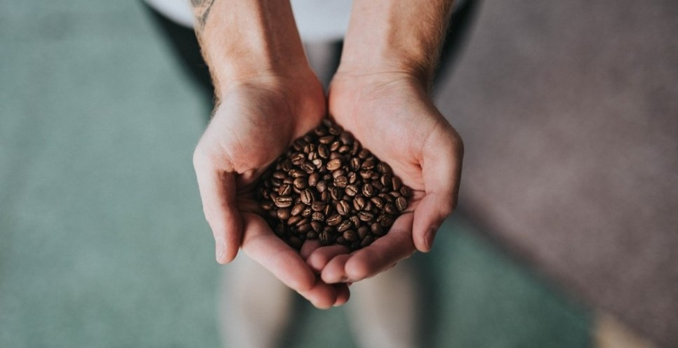 A man holding both hands out cupped and full of coffee beans.