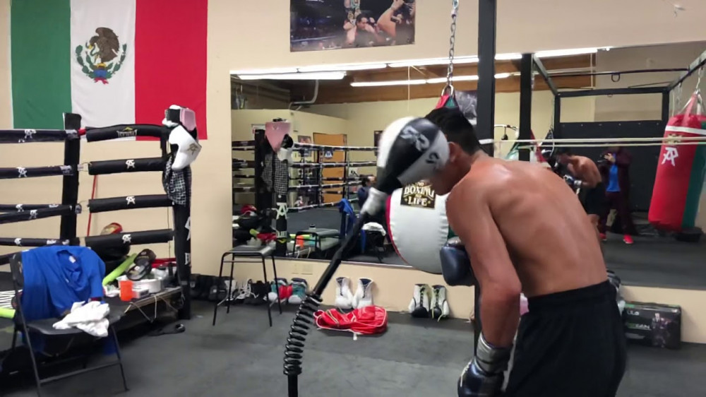 Ryan Garcia | Cobra reflex bag