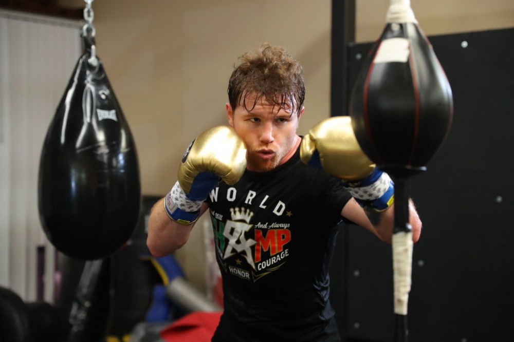 Canelo using the double-end bag