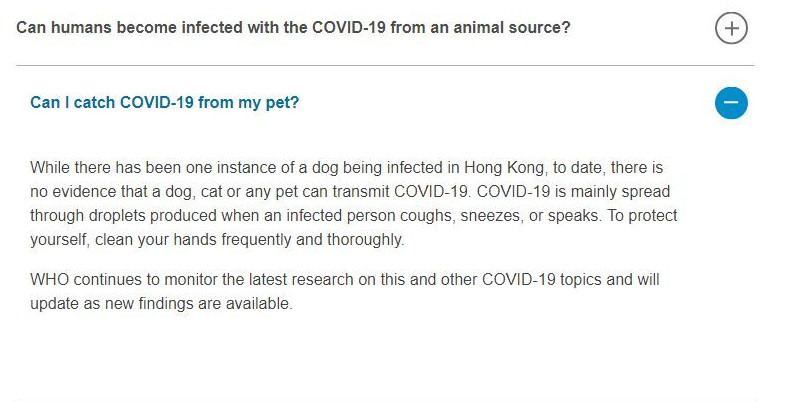 Can Dogs Get Coronavirus? and How to Protect Them?