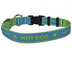 Personalized Hot Dog LED Collar