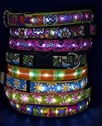 Lighted Dog Collar in fun prints