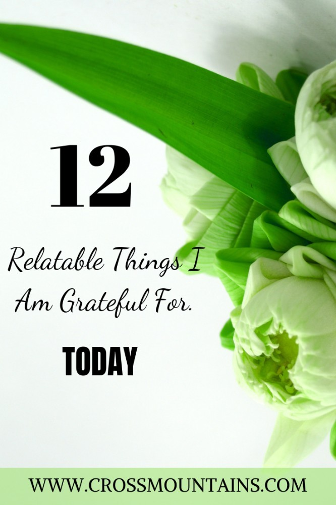 12 things i am grateful for today