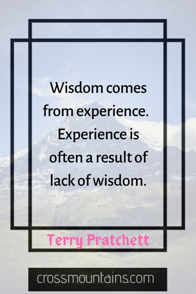 inspirational funny quotes about wisdom and success