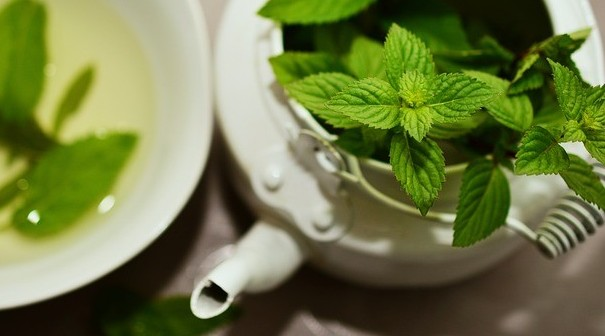 Benefits of Herbal Tea - Peppermint Tea