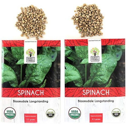 Organic Spinach Bloomsdale Longstanding Heirloom Seeds at Amazon.